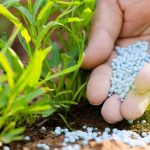 The proper fertilizer, at the right time, placed in the right place and at the exact dose.