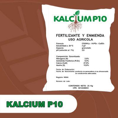 kalciump10